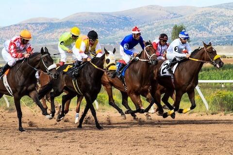 horses and jockeys racing on a track